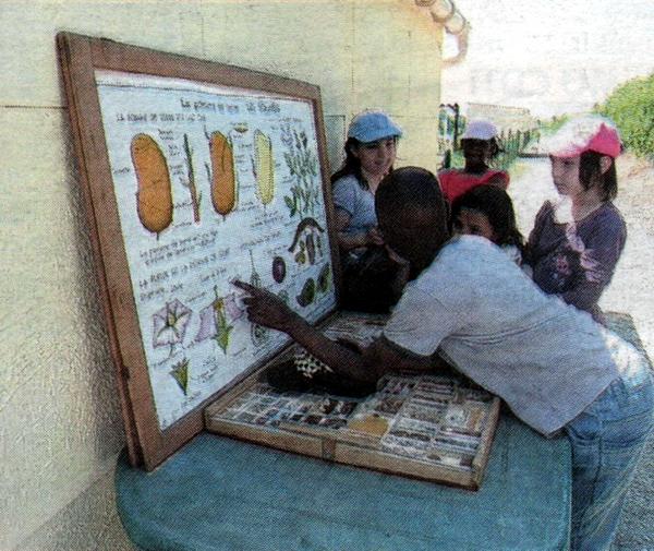 Apprendre les graines et la germination autour d un for Jardinier paysagiste reims