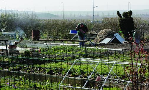 L 39 ami du quartier croix rouge de reims revue de presse sur for Jardinier paysagiste reims